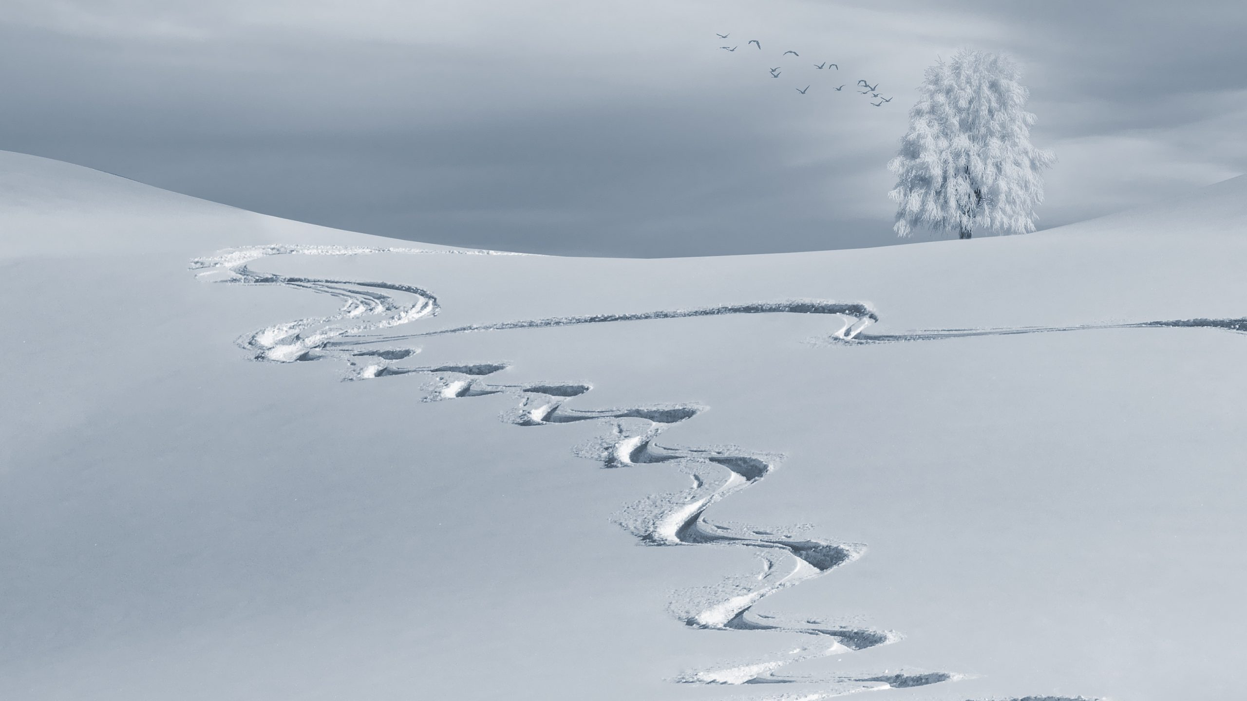 Top Sites to Get Your Next Snow Report