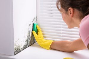 step-by-step-instructions-to-get-rid-of-mold-and-mildew